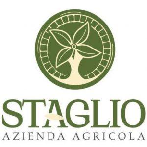 logo_staglio